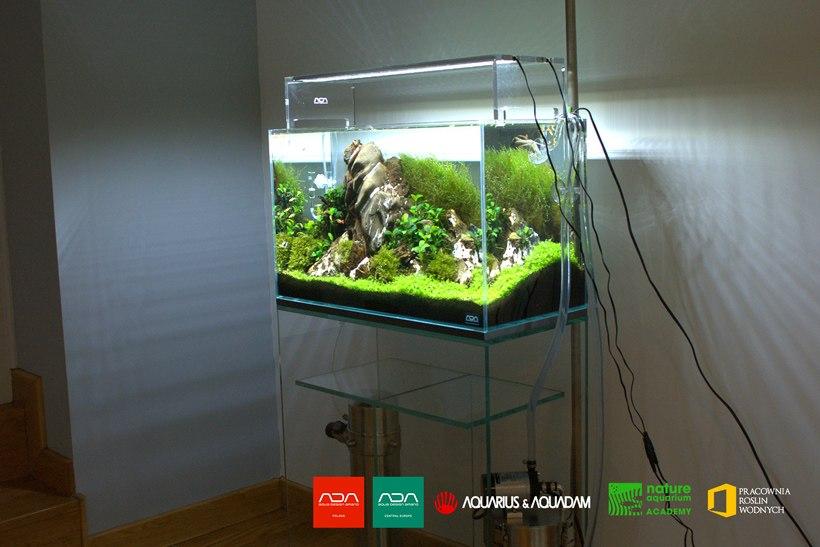 akwarium guardian